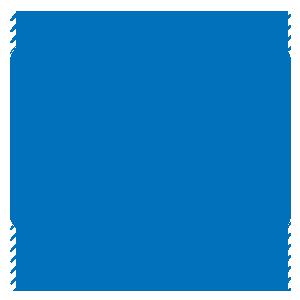 icon mirroring
